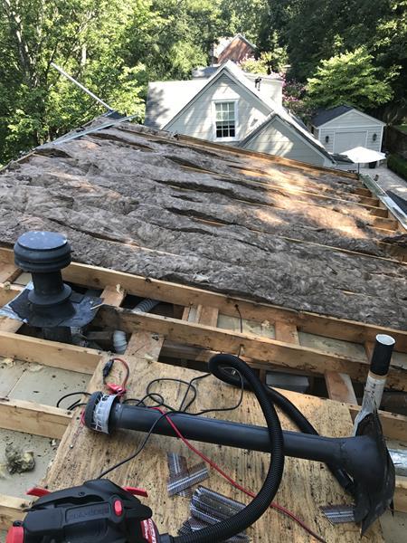 Bat Guano Removal in Attic — Atlanta, GA